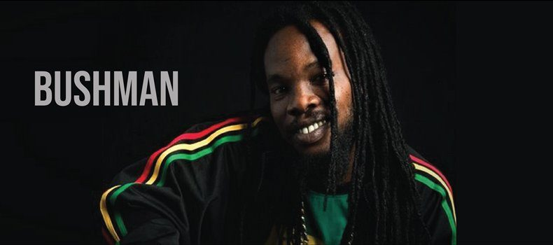 """""""Zawsze byłem oddany muzyce"""" – wywiad z Bushmanem"""